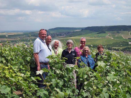 Epernay vineyard - Air Safaris International